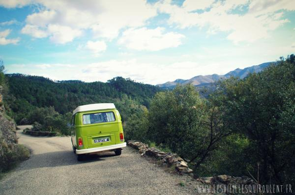 Location combi vw et 2cv, van vintage